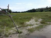 Plots And Acres Of Land For Sale In Lakowe, Awoyaya, Ibeju Lekki, Lagos, Land for Sale