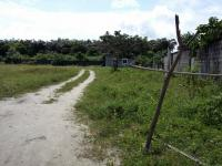 Plots And Acres Of Fenced Land Wth C Of O Behind Abijo Gra, Abijo, Lekki, Lagos, Land For Sale