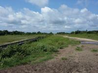 100 Acres Of Land (with C Of O) For Sale In Eko Akete Abijo, , Ajah, Lagos, Land For Sale