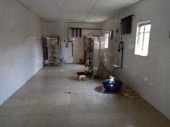 Nafdac Approved Purewater Factory, Gel Street, Igbogbo, Ikorodu, Lagos, Factory for Sale