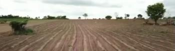 Do Not Miss This Farmland Investment, Near Obasanjo Farms, Ibadan, Oyo, Commercial Land for Sale