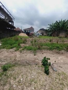 Prime Land, Chevron Drive, Lekki, Lagos, Mixed-use Land for Sale