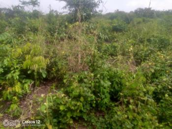 Commercial Land with C of O, Frontier Estate, Bogije, Ibeju Lekki, Lagos, Commercial Land for Sale