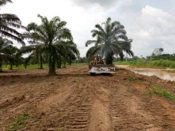 Commercial Land with Gazette, Beach Front Park & Gardens, Eleko, Ibeju Lekki, Lagos, Commercial Land for Sale
