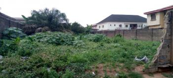 Secured Full Plot of Land in a Nice Environment, New Oko-oba, Agege, Lagos, Mixed-use Land for Sale