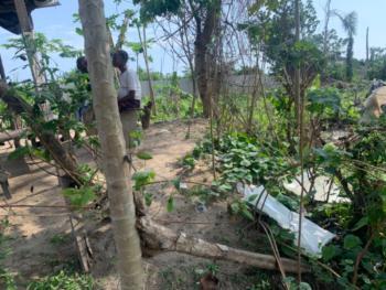 Mixed Used Purpose Land, Abijo Gra Main Road, Abijo, Lekki, Lagos, Mixed-use Land for Sale