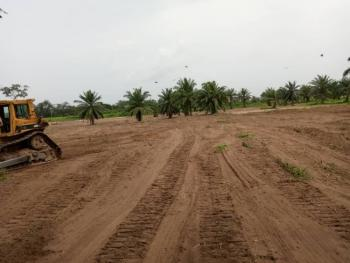 Genuine, Dry and Most Affordable Land Available, Behind Igbonla Model College, Epe, Lagos, Residential Land for Sale