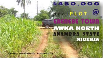 Photo 30 Plots Of Land To Be Sold @ 450k Per Plot 08182139310, Awka, Anambra, Land for Sale