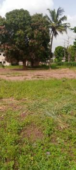 12000sqm (3 Acres) Available for Pickup, Agege Motor Road, Cappa Bus-stop, Mushin, Lagos, Industrial Land for Sale