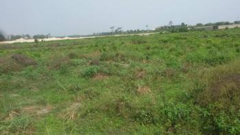 Large Expense of Land, Lekki Free Trade Zone, Lekki, Lagos, Mixed-use Land for Sale