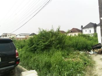 2,560 Square Meters Land with Governors Consent, Chevy View Estate, Off Chevron Drive, Lekki, Lagos, Land for Sale