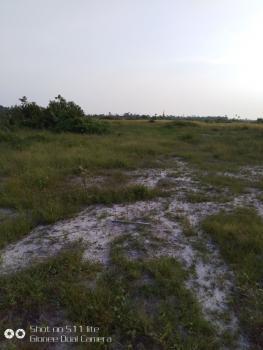 50 Plots of Land, After Dangote Refinary, Eleko, Ibeju Lekki, Lagos, Industrial Land for Sale