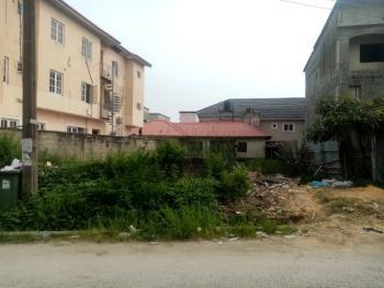 4000 Square Meters, Opposite Abraham Adesanya Estate, Lekki Expressway, Lekki, Lagos, Mixed-use Land for Sale