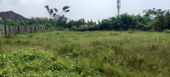 Just Out!, Sunshine Gardens Estate Behind Blenco Supermarket, Olokonla, Ajah, Lagos, Land for Sale