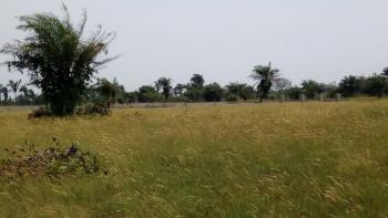 Residential Government Approved Promo Launched Dry Land for Investment, 4 Minutes Drive From Lacampaigne Tropicana, Okun Ise Gra, After Eleko, Eleko, Ibeju Lekki, Lagos, Commercial Land for Sale