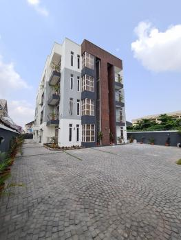 Luxury 2 Bedroom Apartment with Excellent Finishing, Chevron, Lekki, Lagos, Flat for Sale