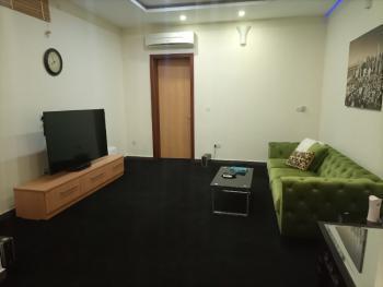 Luxury One Bedroom Furnished Flat, Ikoyi, Lagos, Mini Flat for Rent