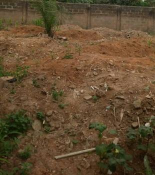 Half Plot Virgin Land 360sqm Wise Buy, Abimbola Awoliyi Estate, New Oko-oba, Agege, Lagos, Residential Land for Sale