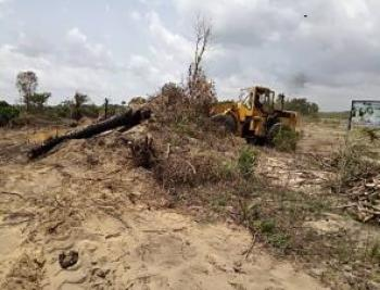 20 Plot of Land with Governor Consent Facing The Express, Directly Facing The Lekki Epe Express Way, Abijo, Lekki, Lagos, Commercial Land for Sale