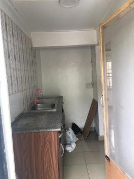 Lovely Mini Flat, Bode Thomas, Surulere, Lagos, Mini Flat for Rent