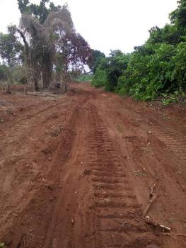 Affordable Residential Land with C of O, Diamond Estate, Atan, Sango Ota, Ogun, Residential Land for Sale