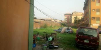 Two Plots of Land. Title: C of O, Alice Tinubu Street, Orile Iganmu, Surulere, Lagos, Mixed-use Land for Sale