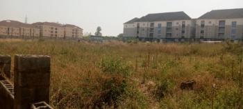 Fantastic 5000sqm, Mass Housing, C of O, Patricia Ette Street, Wuye, Abuja, Residential Land for Sale
