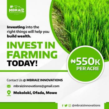 1 Acre of Farmland on a Virgin Soil, Onidundun, Mowe Ofada, Ogun, Commercial Land for Sale