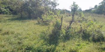 2 Plots of Land Measuring 1820 Sqm, Kabba - Ilorin Expressway, Araromi Kabba, Kabba/bunu, Kogi, Mixed-use Land for Sale