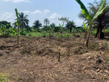 5 Plots of Land, Off P/h Intl Airport Road, Off Imogu-ozuoha Road, Omagwa, Port Harcourt, Rivers, Mixed-use Land for Sale