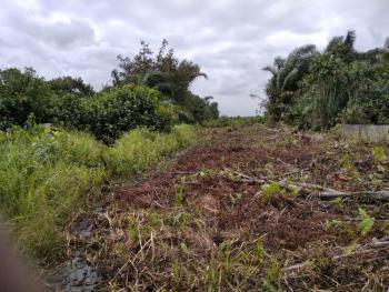 50 Plots of Land, Behind Abba Hearts School Opposite Ekoakete, Abijo, Lekki, Lagos, Residential Land for Sale
