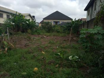 Lovely 325sqm Land with C.of.o, Mapplewood Estate, Oko-oba, Agege, Lagos, Residential Land for Sale