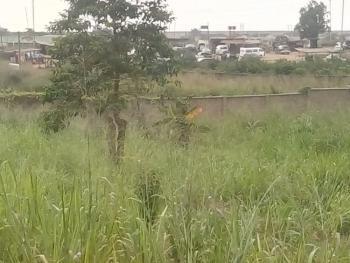 14 Acre Industrial Land, Lagos Ibadan Expressway, Mowe Town, Ogun, Industrial Land for Sale