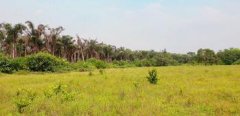20% Discount Off, Serviced Plots with C of O, Beechwood Estate, Bogije, Ibeju Lekki, Lagos, Residential Land for Sale