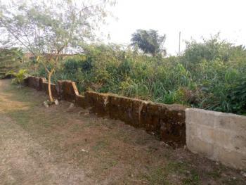 Open Table Land, Beside Unity School, Udu Uruan, Uyo, Akwa Ibom, Mixed-use Land for Sale