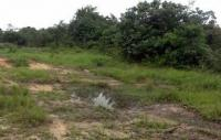 Virgin Land For Sale At Shimawa, , Ojodu, Lagos, Land For Sale