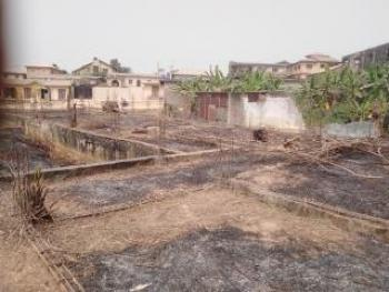 Full Plot of Land Corner Pix with Foundation and C of O, Ojokoro Newtown Estate, Agric, Ikorodu, Lagos, Mixed-use Land for Sale