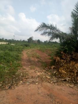 10.145 Acres of Land, Iganke, Owu Ikosi, Along Itokin-sagamu Road, Agbowa, Ikorodu, Lagos, Mixed-use Land for Sale