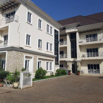 Serviced Luxurious 3 Bedrooms Flat with Air-conditioning, Jabi, Abuja, Flat for Rent