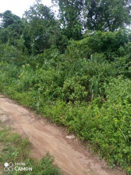 Farm Land Available, Egansoyindo, Epe, Lagos, Commercial Land for Sale