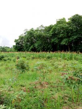 1500 Sqm Residential Land, Maitama 2, Maitama District, Abuja, Residential Land for Sale