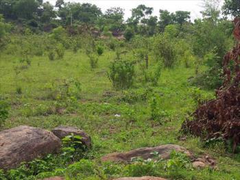 Fantastic 39 Hectares Karsana West Mass Housing Land, After Efab Estate, Karsana West, Karsana, Abuja, Land for Sale