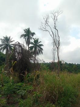 3000 Acres of Land Good for Farming and Any Kind of Commercial Purpose, Ikire, Close to Osun State University, Ife East, Osun, Commercial Land for Sale