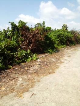 5 Plot of Land with Gazette in a Developed Area, Directly Facing The Lekki Epe Express Way in Between Onosa and Lga, Igando Orudu, Ibeju Lekki, Lagos, Commercial Land for Sale