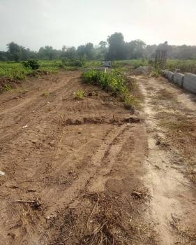 54 Hectares Land, Airport Road, Central Business District, Abuja, Commercial Land for Sale