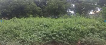 54.24 Hectares of Land, By Airport Road, Kyami, Abuja, Mixed-use Land for Sale