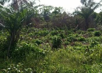 68 Hectares, Mixed Use Development Comprehensive on Paper, Gudu, Abuja, Mixed-use Land for Sale