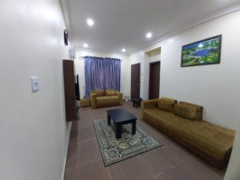 Fully Furnished and Serviced Luxury One (1) Bedroom Apartment, Highgate Estate, Wuye, Abuja, Mini Flat Short Let