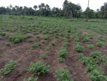 Registered Survey, Remo, Ijebu East, Ogun, Commercial Land for Sale