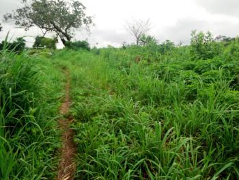 3 Acres of Land, Kila After Omi Adio, Ibadan, Oyo, Mixed-use Land for Sale
